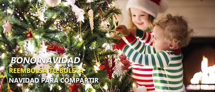 Fiestas Patrias y Navidad